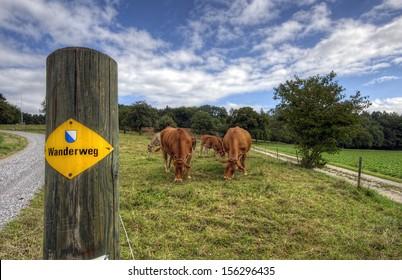 Walking Trails in Switzerland