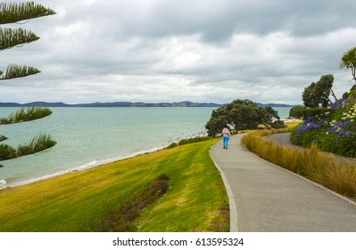 Walking Trek at Omana Beach Auckland New Zealand