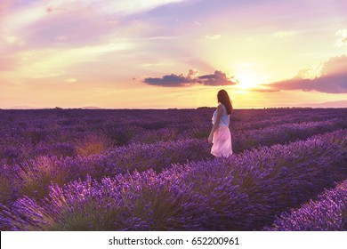 Walking women in the field of lavender.Romantic women in lavender fields, having vacations in Provence, France.Girl admires the sunset in lavender fields.