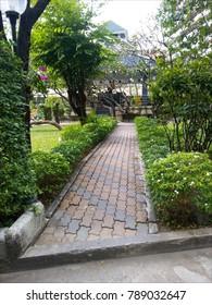Walkpath across garden
