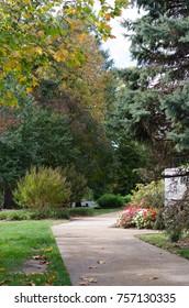 Walkway Among Landscaping