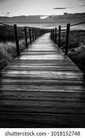 Walkway to the beach at sunset after rain. Black and white