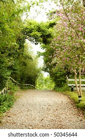 a walkway with beautiful scene in the park