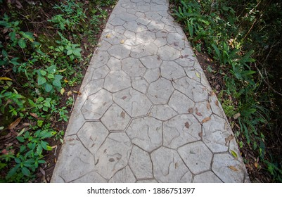 The walkway with cement floor has grass on the side.