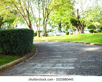 Walkway curve in the park to exercise