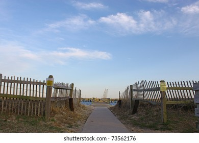 A walkway down the sidewalk through the Beach on the way to the fishing pier with a bright blue sky and room for your text.