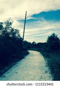 The Walkway of Force