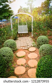 walkway garden / vintage bench flower with stone and brick on ground for walkway or pathway in the garden and flower plant  background
