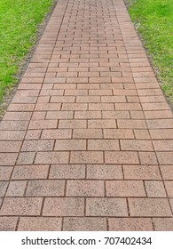 A walkway made of natural bricks with grass on sides.
