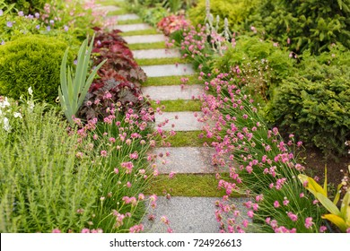 Walkway made of paving slabs in the garden in backyard in summer. Pathway with blooming flowers. Gardening concept