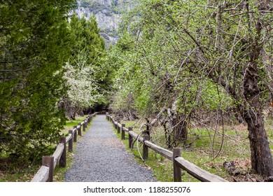 Walkway near Lower Yosemite Fall in Yosemite National Park