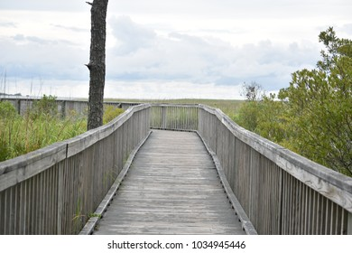 Walkway out to a dock in a bay at the Outer Banks NC.