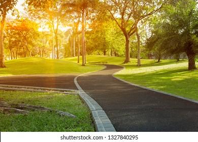 Walkway in the park