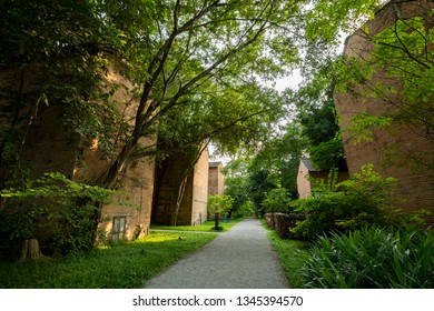 Walkway pass old tobacco curing plant with big tree