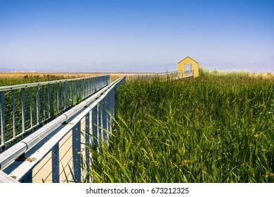 Walkway through the marsh at Alviso Marina County Park, San Jose, California