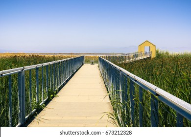 Walkway through the marsh at Alviso Marina County Park, San Jose, California