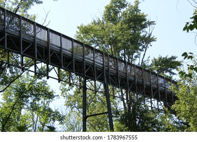 Walkway through the trees to an observation tower at a nature preserve