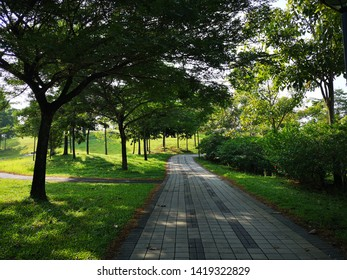 A walkway under the shade with strong lighting