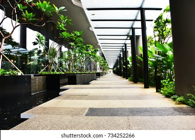 walkway with water feature