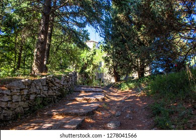 Walkway in the woods to the old castle, San Marino