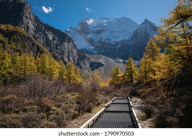 Walkway in Yading nature reserved in autumn