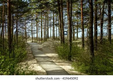 Walkways to sea
