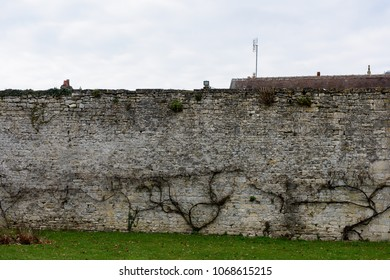 Wall around the Royal castle complex in Senlis, Medieval town in the Oise department,  France