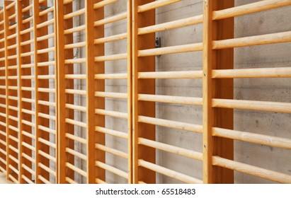Wall bars in the school gymnastic hall