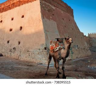Wall Casbah Agadir Oufella