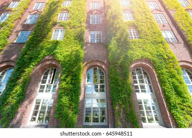 Wall of city hall (stadshuset) building covered by green in Stockholm, Sweden, Scandinavia, Europe