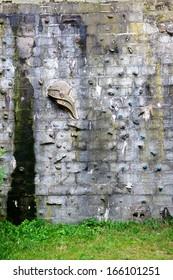 wall to climb