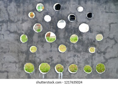 A wall concrete polishing floor with many circled blowholes and blur green grass background