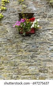 Wall Garden 2