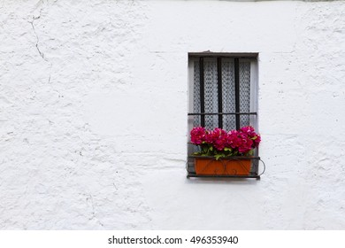 Wall with geraniums on a mediterranean house