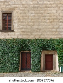 Wall of a historic building decorated with ivy.