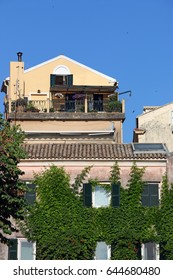 wall of an old house covered with foliage of liana Corfu town Greece
