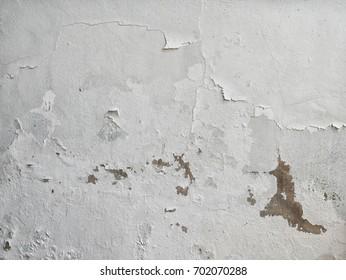 The wall paint peeling.