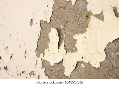 Wall paint peeling off due to moisture problems on wallcovering, need repaired and re-painted
