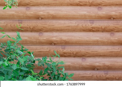 Wall of a plastic siding log house wall with plants