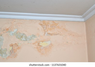 Wall of a room damaged due to moisture