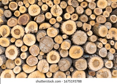 Wall of stacked wood logs for background