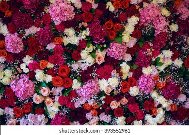 wall with variety of flowers, roses, carnations, hydrangeas