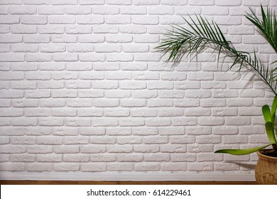 Wall of white bricks next to a plant in the pot, background texture for business