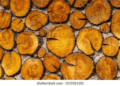 the wall of wood logs
