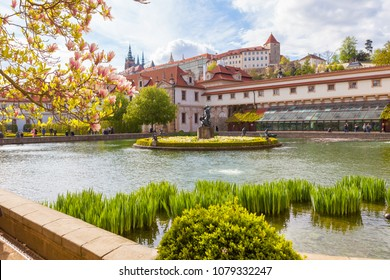 Wallenstein garden with a pond and a fountain, the most impressive in Prague. Spring time with blooming magnolia.