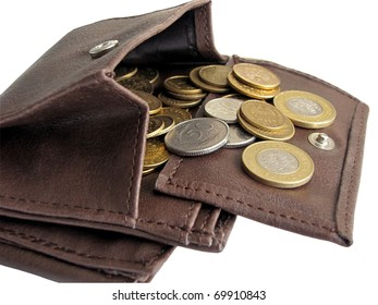 wallet with polish coins