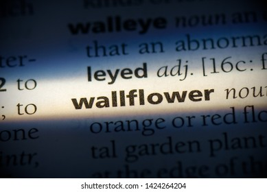 wallflower word in a dictionary. wallflower concept, definition.