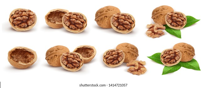 Wallnuts. Whole, half, peeled walnut, walnut shell, walnut kernel, walnuts with leaves isolated on white background. Collection. Set.