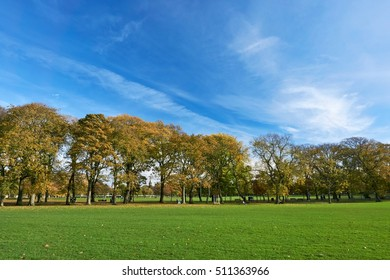 Wall-Poster Idea. Beautiful colorful autumn in the park with colorful trees and sunshine in the fall season, autumn landscape