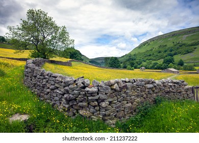 Walls and meadows in the Yorkshire Dales near Muker